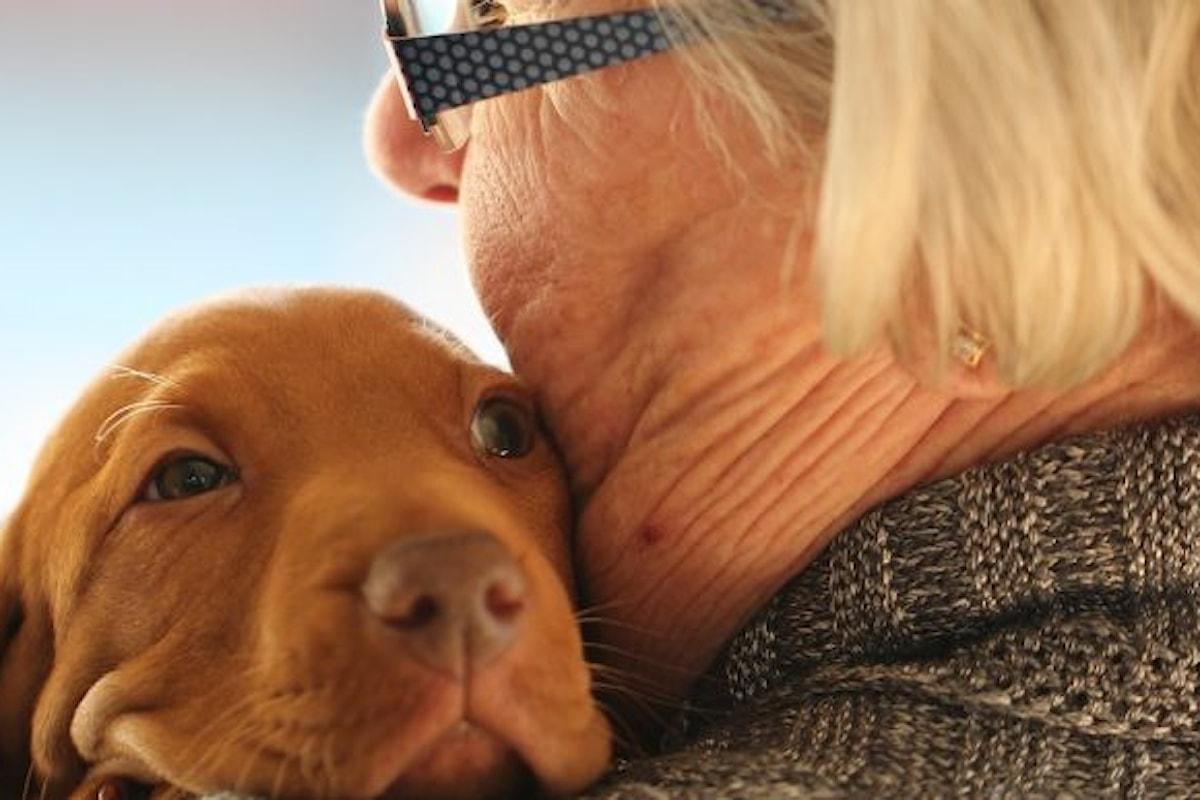 Anziani e animali da compagnia: ma chi l'ha detto che è il cane l'animale più presente?