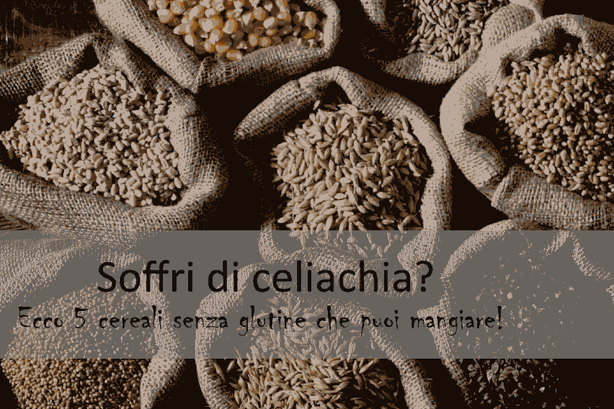 Due cereali senza glutine che possono essere mangiati senza farsi troppe domande