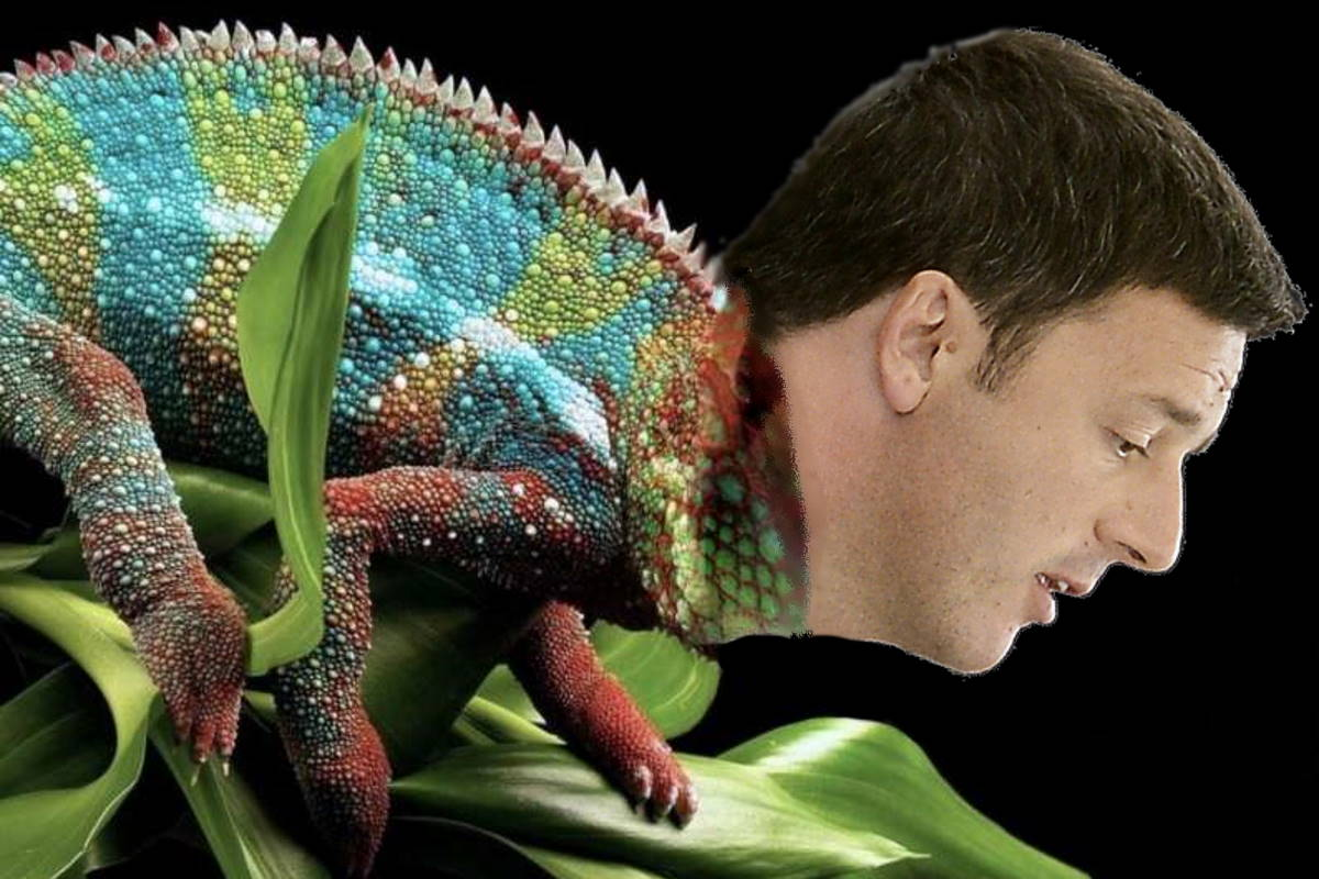 La zampata del camaleonte
