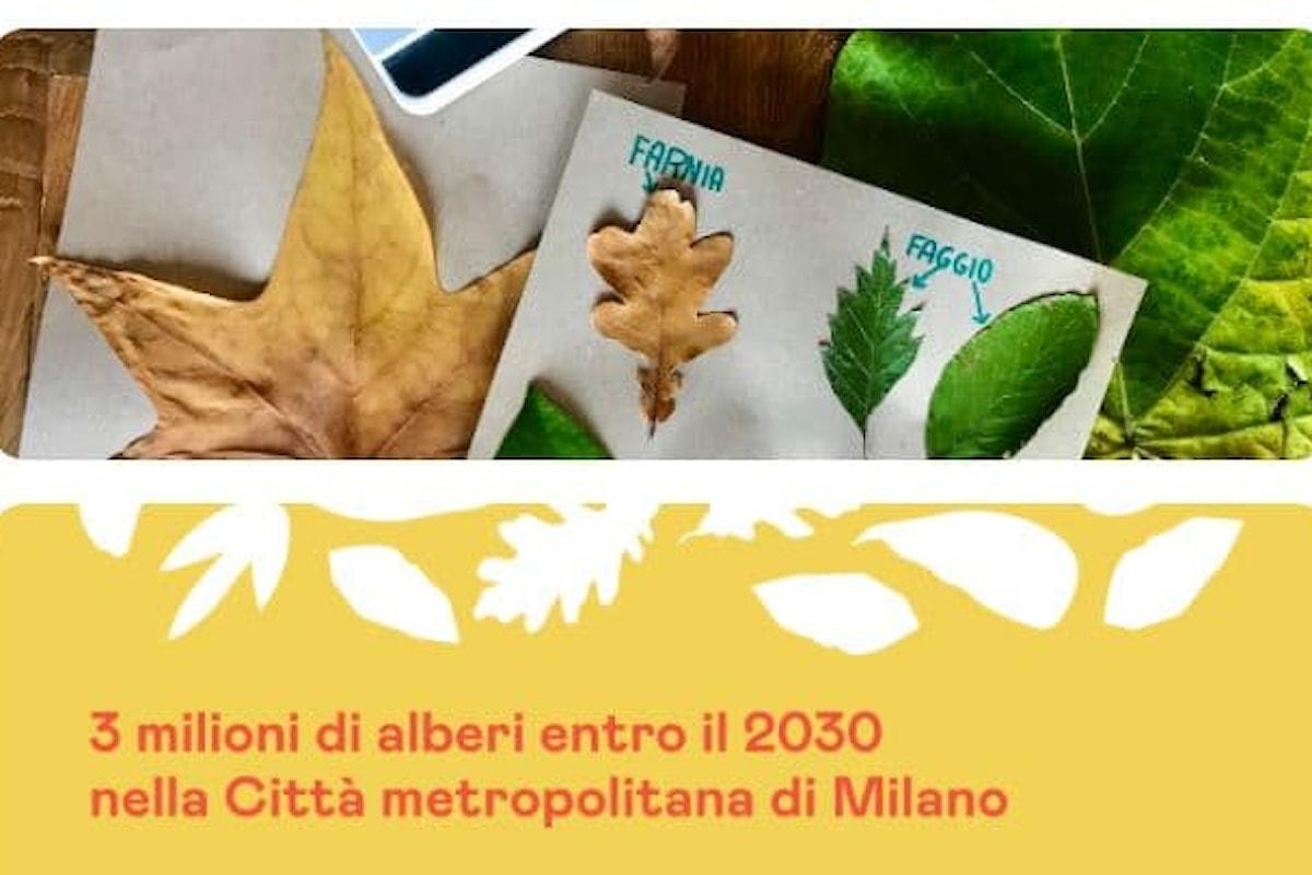 Con Forestami Milano si riempirà di alberi