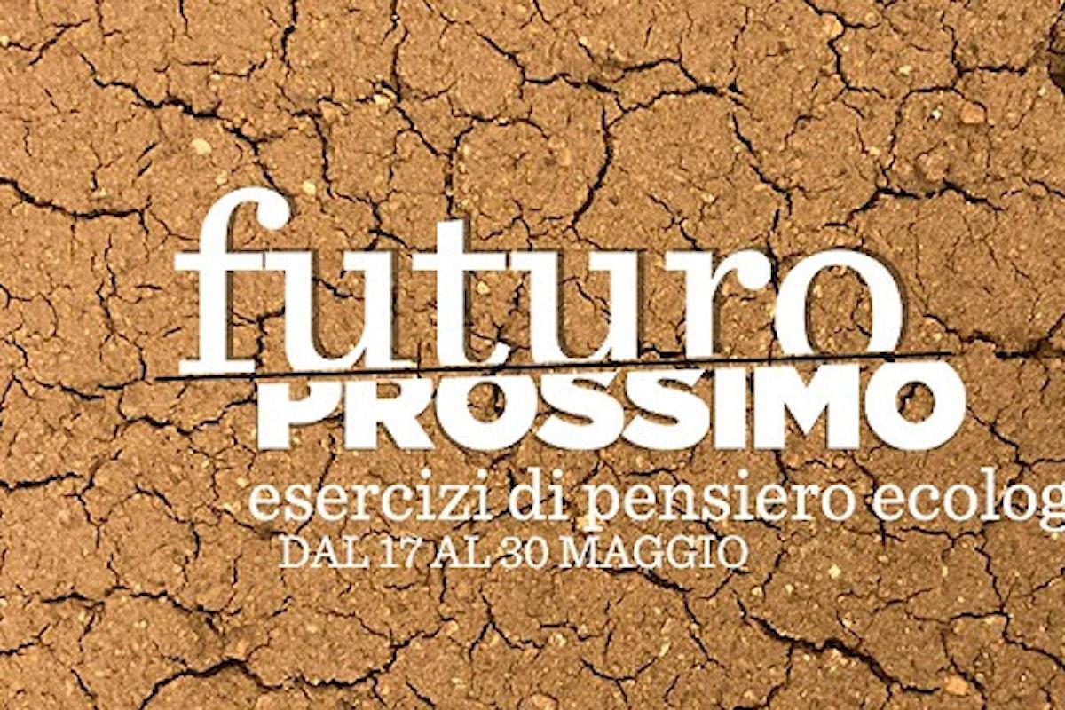 La Città Ideale presenta: Futuro / Prossimo. Esercizi di pensiero ecologico