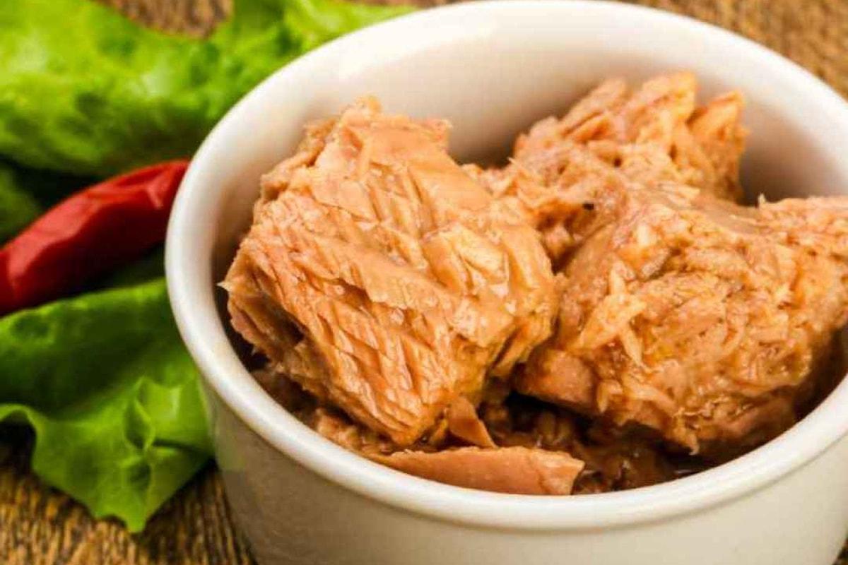 Fonte di Omega 3 e ricco di proteine ad alto valore biologico, ecco 5 motivi per mangiare il tonno in scatola