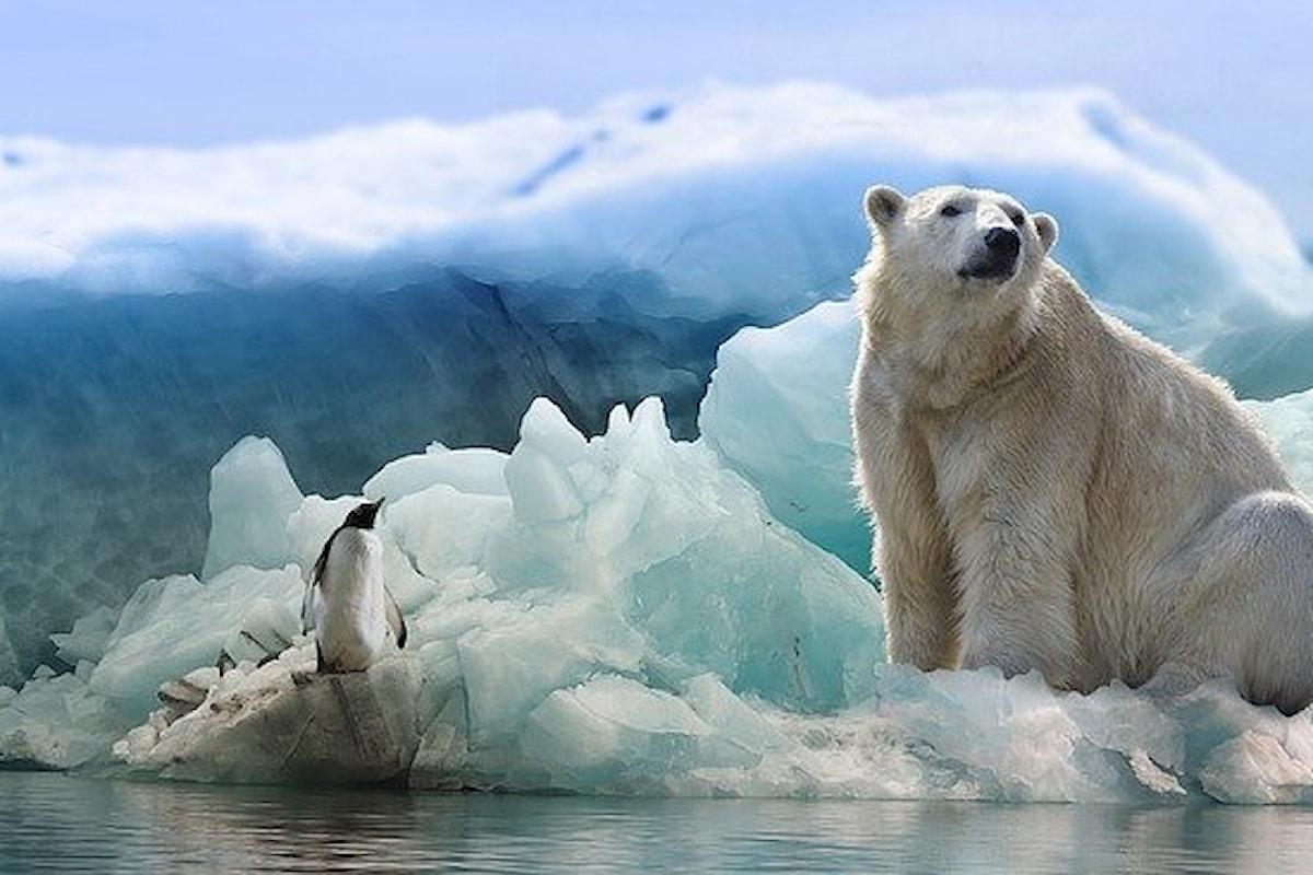 Perché i cambiamenti climatici sembrano non preoccuparci troppo