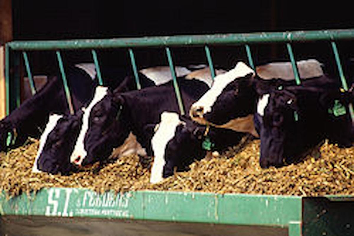 Analisi del latte più precise, con la citometria a flusso