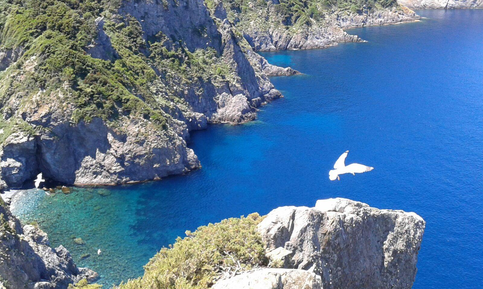 Isola di Gorgona. Un paradiso naturale in Toscana