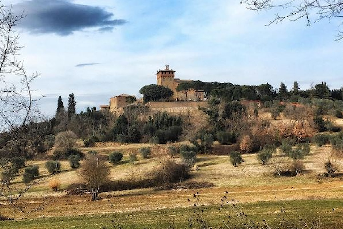 Scopri e visita Panzano in Chianti