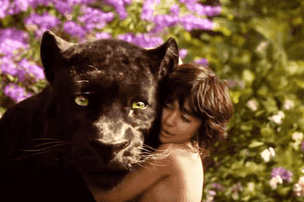 Il libro della giungla di Jon Favreau, un film coinvolgente