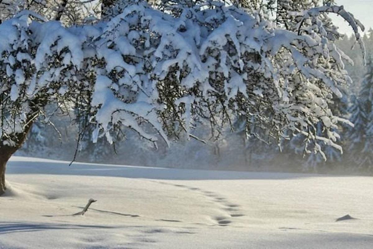 Allerta meteo in Campania: gelate e neve a bassa quota