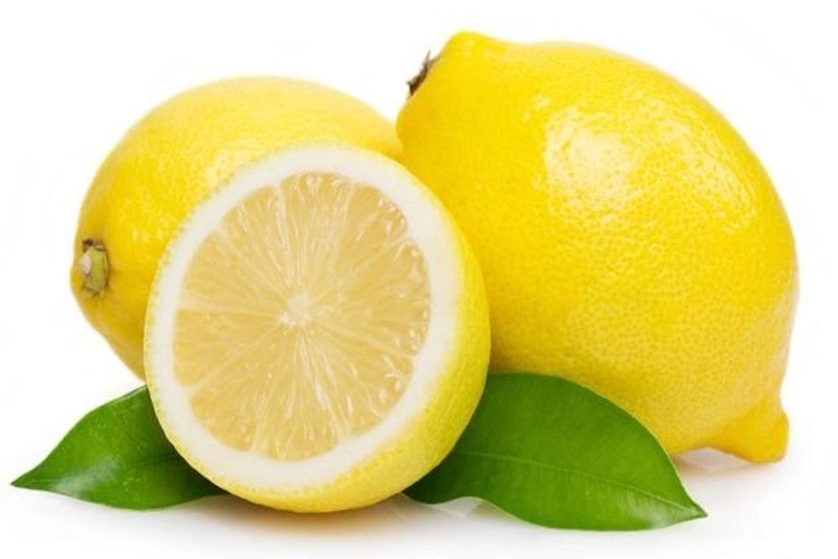 Il limone, uno degli alimenti più ricchi di sempre