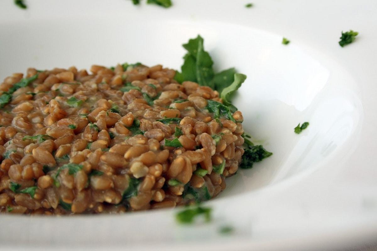 Le confessioni di una macrobiotica: il farro, cereale antico da riscoprire