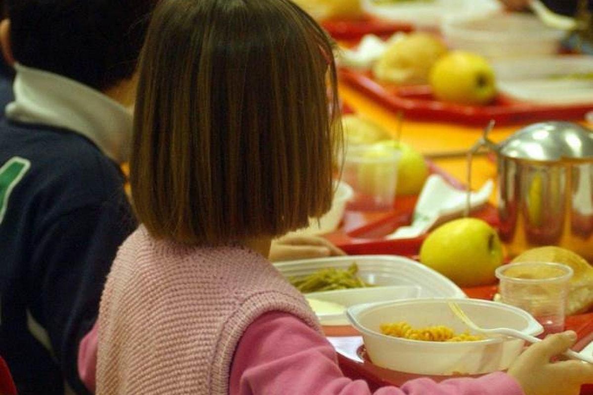 Un rigoroso studio scientifico ha rilevato la presenza di pericolosi ftalati nelle urine di bambini che mangiano presso le mense scolastiche