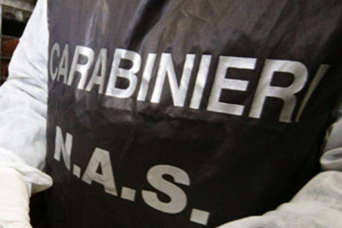 Sicurezza alimentare, operazione dei Carabinieri tra Napoli, Salerno e Potenza