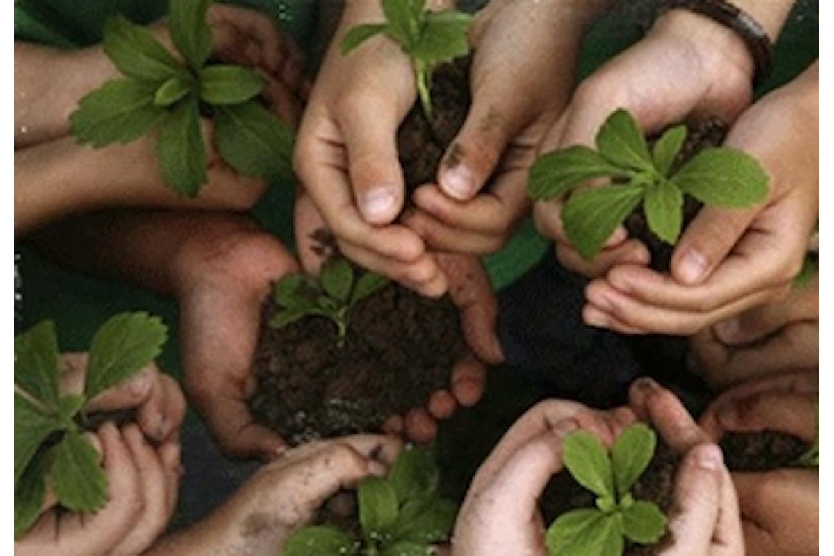 Marco Carra: servizio civile nell'agricoltura sociale per 1830 giovani