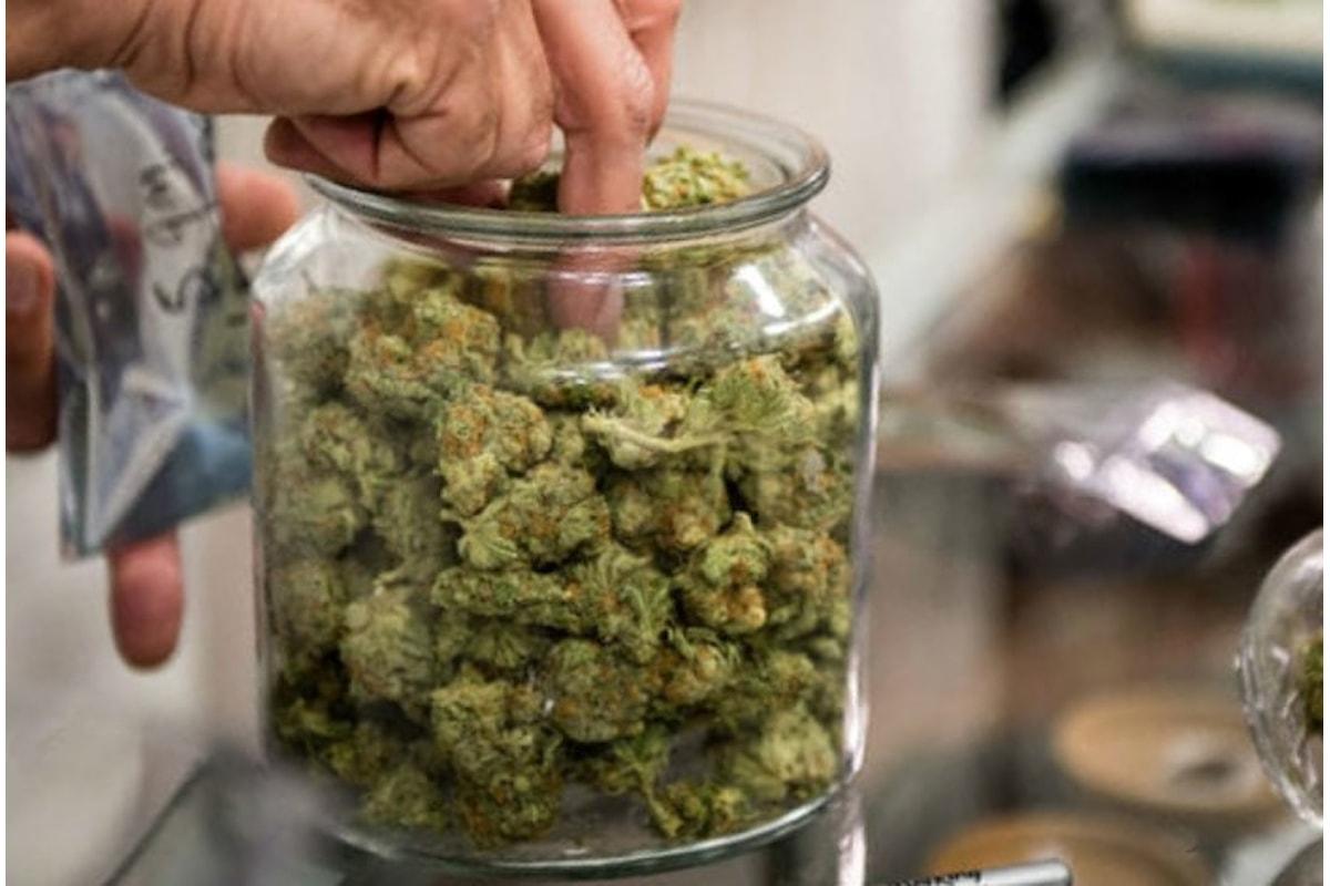 Approvata alla Camera la presa in giro della legge sulla cannabis
